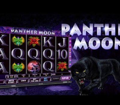 รีวิวเกมสล็อต Panther Moon สล็อตธีมแมวดำ Pussy888